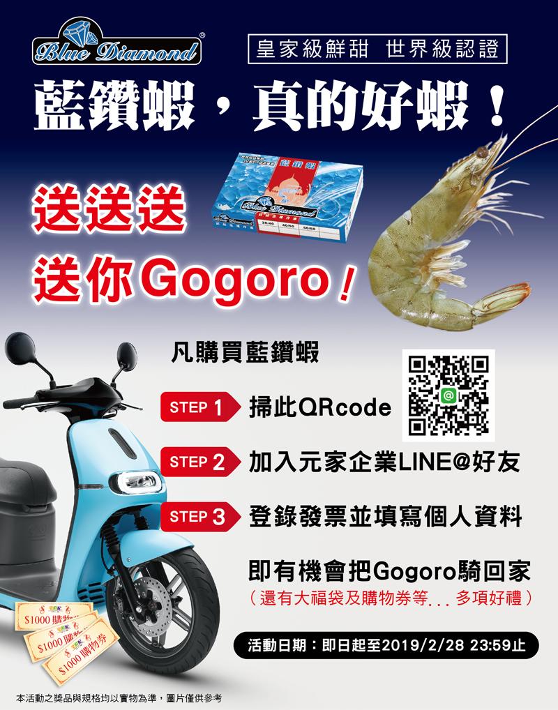 藍鑽蝦,真的好蝦!GOGORO讓你騎回家